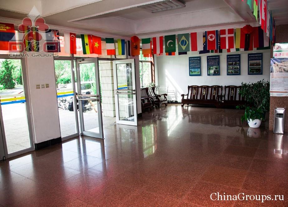 общежитие университета Лудонг