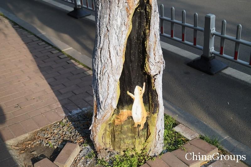 Украшение изъянов на деревьях