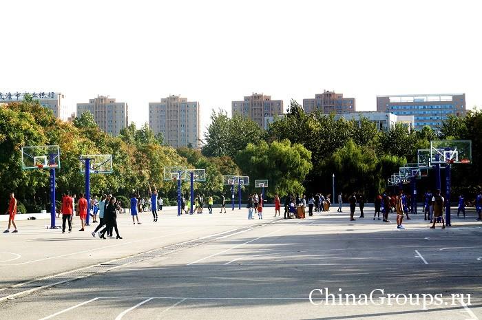 Спортивные площадки для студентов ШПУ
