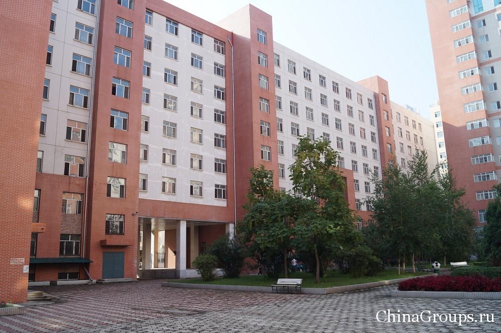 общежития харбинского политехнического университета