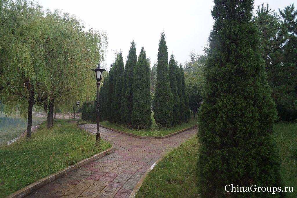 территория института Циньдао