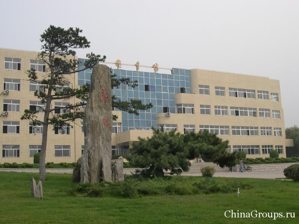 прилегающая территория университета