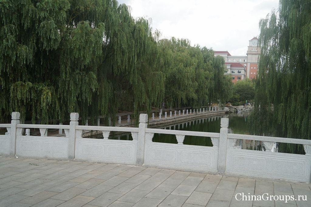 Большой мост на территории кампуса