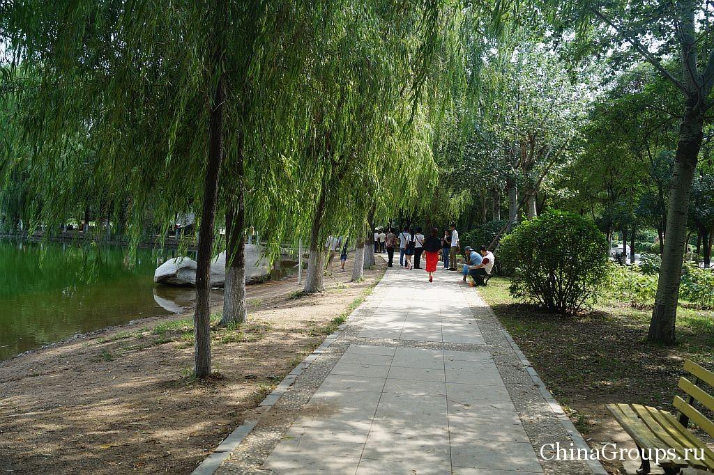 Прогулки по территории университета Бохай