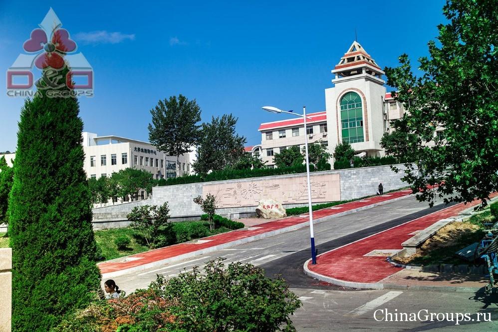 территория университета Лудонг