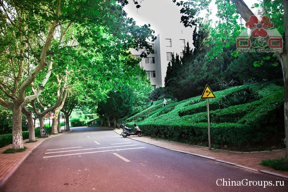Территория университета Лудонг в Яньтае