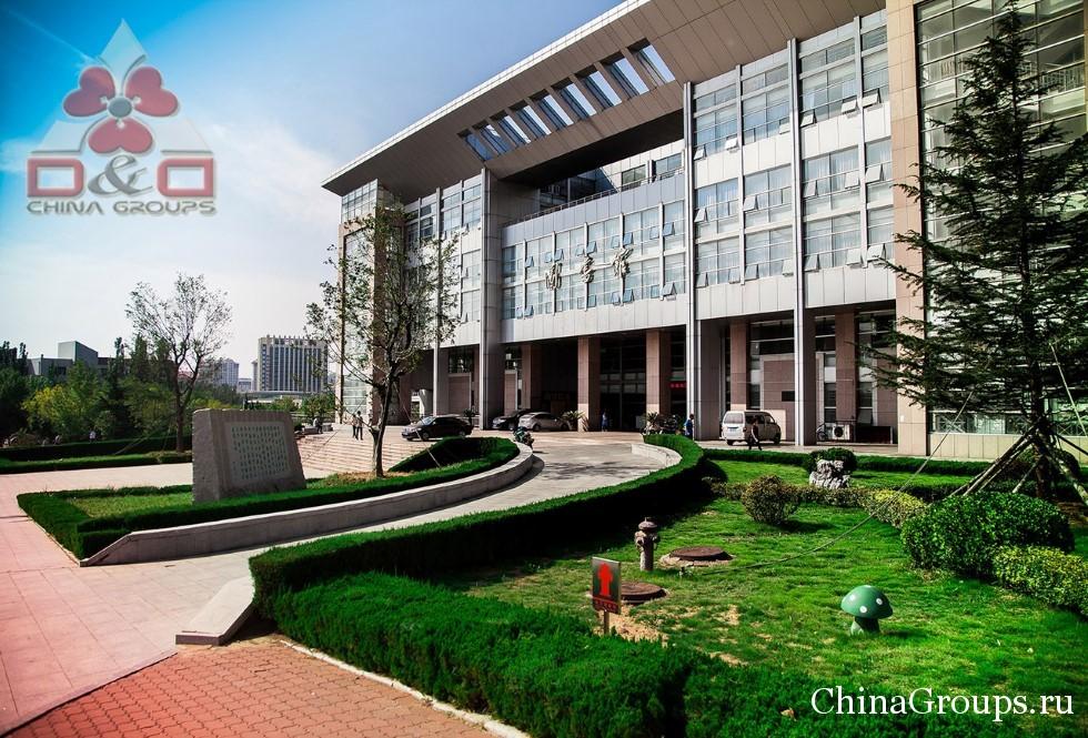 библиотека университета Лудонг