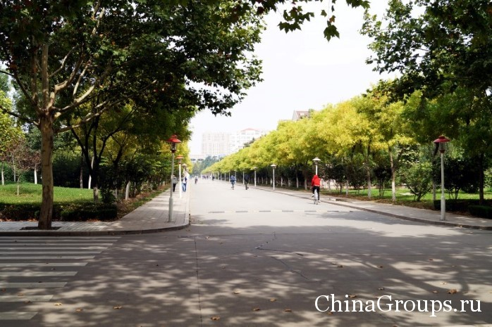 Территория Шаньдунского политеха