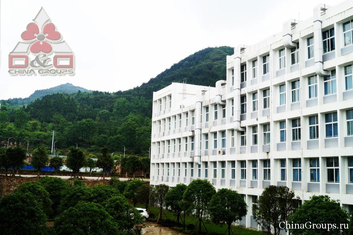Институт Тунжень территория кампуса вид на кампус