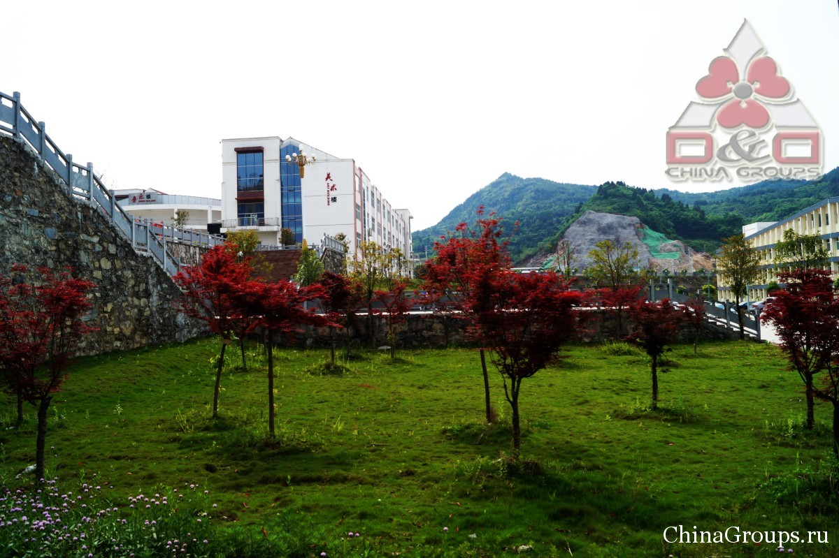 Институт Тунжень территория кампуса украшение территории