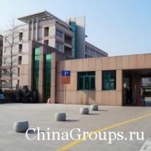 Отзывы об университете Лудонг